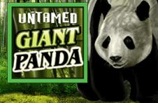 Демо автомат Untamed Giant Panda