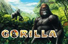 Демо автомат Gorilla