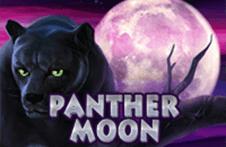Демо автомат Panther Moon